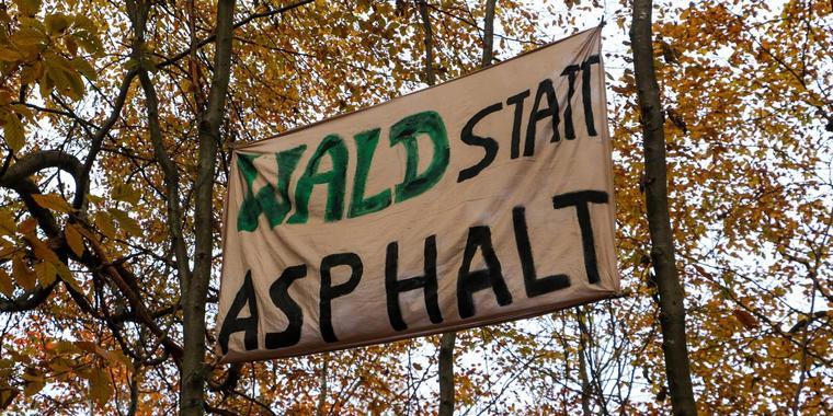 Danneröder Wald  Vortrag über die Waldbesetzung und eine Einführung in den Grünen Anarchismus – 14.8. – 19:30 – Komplex Schwerin – Organisiert von der Libertären Brise für Schwerin